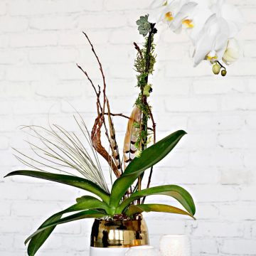 The Orchid Trio floral arrangement by Rebecca Shepherd Floral Design
